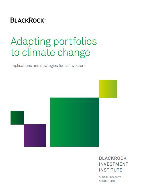 Adapting portfolios to climate change
