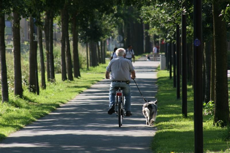 Europarlement akkoord met GroenLinks-voorstel voor duurzaamheidseisen pensioenfondsen