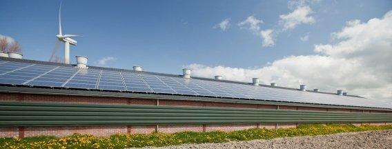 Dubbele overtekening SDE+ subsidieregeling voor hernieuwbare energieprojecten