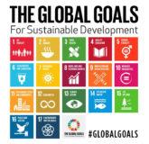 18 vooraanstaande financiële instellingen in Nederland omarmen de UN Sustainable Development Goals