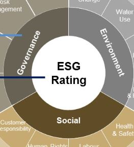 The race to embrace ESG ratings