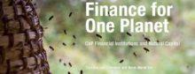 Financiële instellingen jagen duurzaamheid aan bij bedrijven