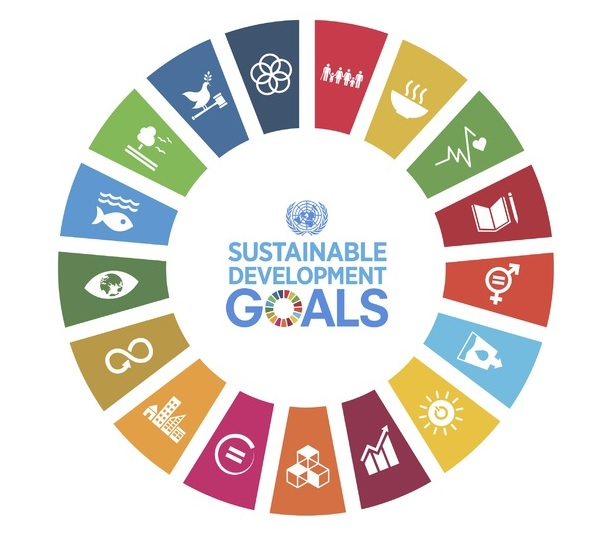 Robeco and RobecoSAM launch Global SDG Credits strategy