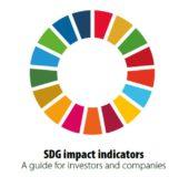 Financiële sector maakt impact van investeringen in SDG's beter meetbaar