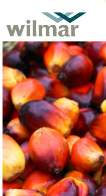 Wilmar first palm oil firm to link bank loan to sustainability metrics