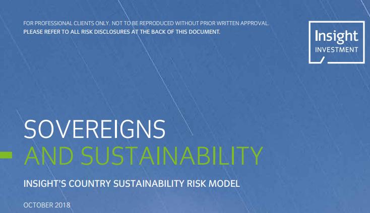 BNY Mellon's Insight: Dalende ESG-score voor meeste landen