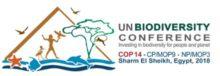 ASN Bank presenteert methodiek biodiversiteitsvoetafdruk aan Verenigde Naties