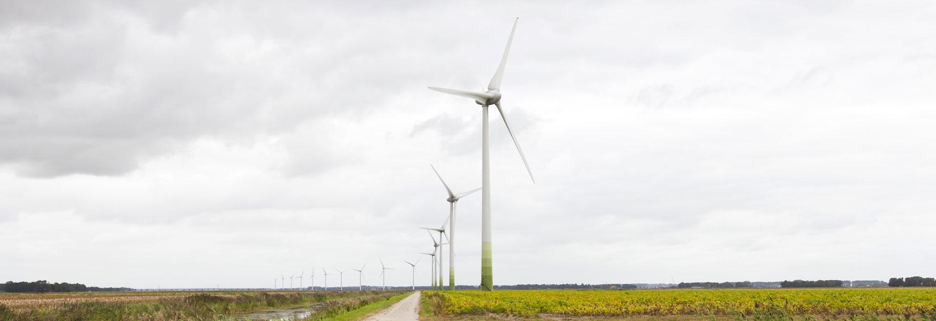 Realisatie windpark De Veenwieken stap dichterbij met nieuwe investeerders