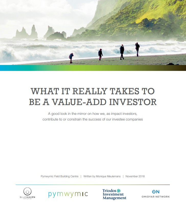 A look in the mirror for impact investors: 'What it really takes to be a value-add investor'