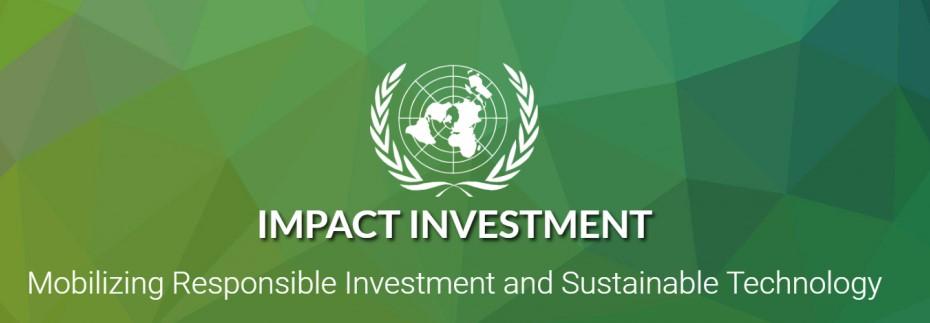 UNIDO and WAIPA launch e-learning module on impact investing