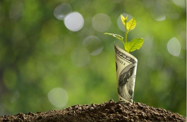 Voordelen van het beleggen in groenfondsen