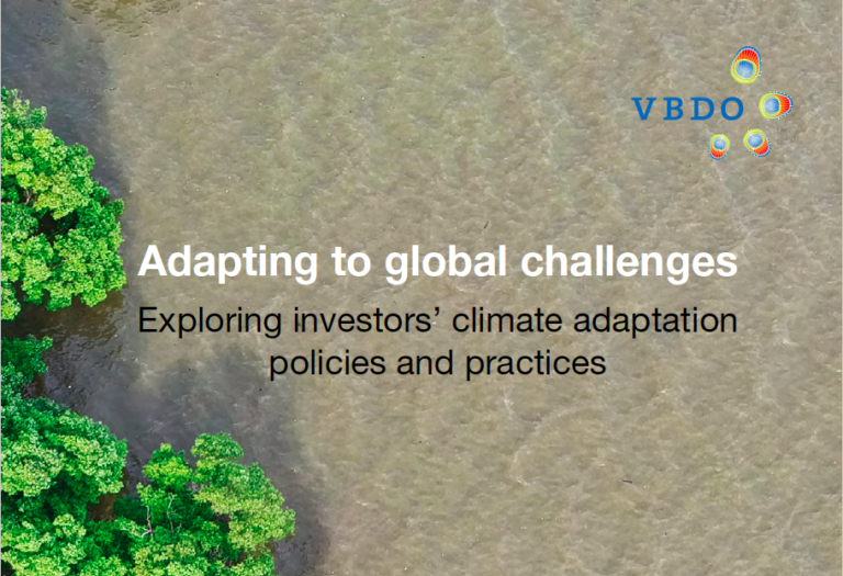 VBDO study: Exploring investors' climate adaptation policies and practices – Adapting to global challenges