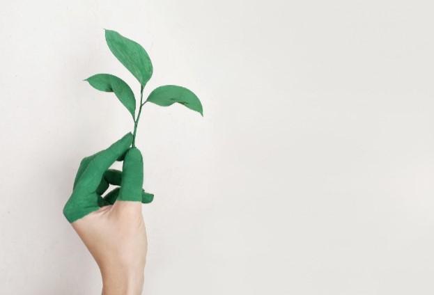 Investeren in duurzame bedrijven uiteindelijk minder risicovol