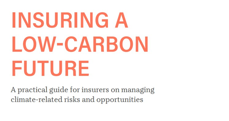 Global insurers share successful climate change strategies to drive greater action and ambition