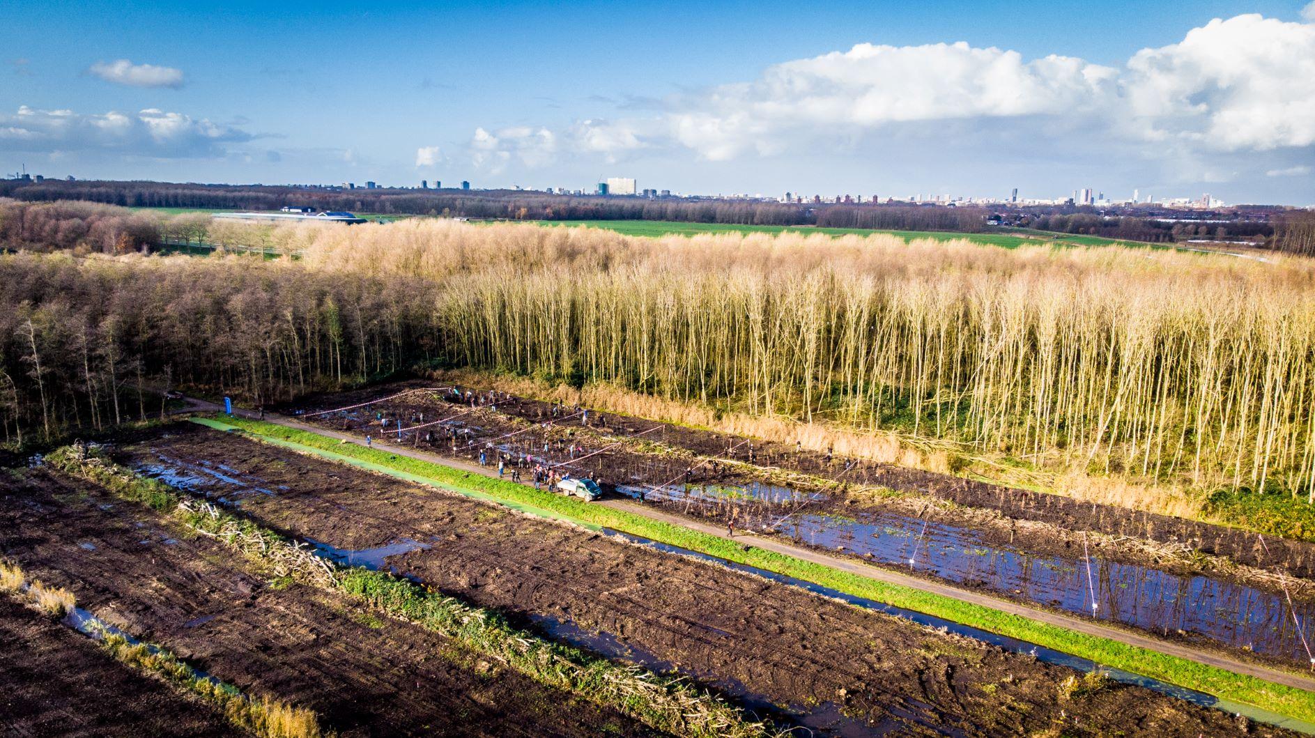 Zwitserleven gaat 2.000 bomen aanplanten
