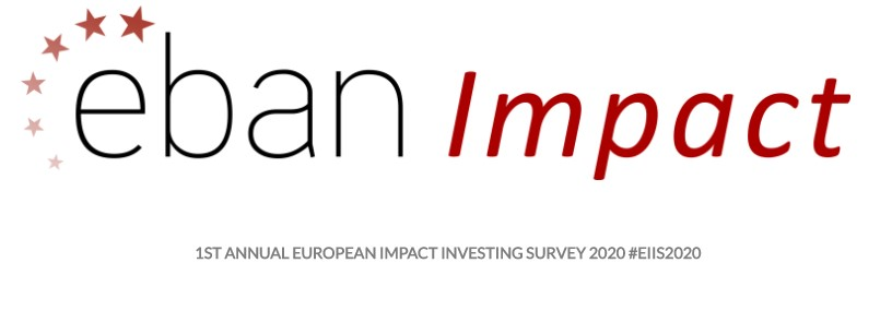 1ST Annual European Impact Investing Survey 2020 launched