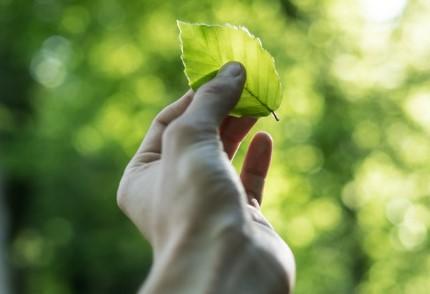 Investeerders vinden ESG van doorslaggevend belang bij keuze beleggingen in een crisis