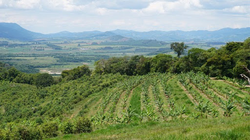 Stichting DOEN steunt Regeneratieve Landbouw Start-up