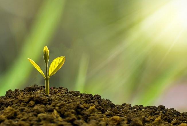 Zo kun je op een simpele manier duurzaam beleggen