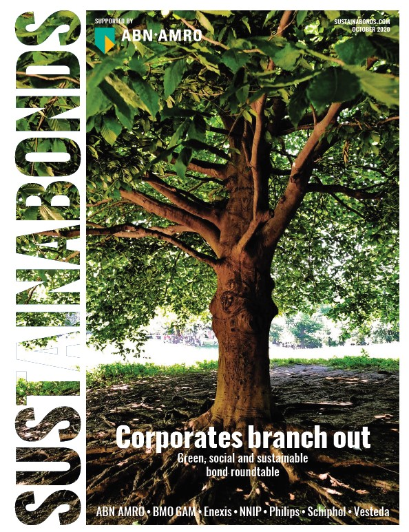 An update on the Green & Social Bond market with ABN AMRO & Sustainabonds