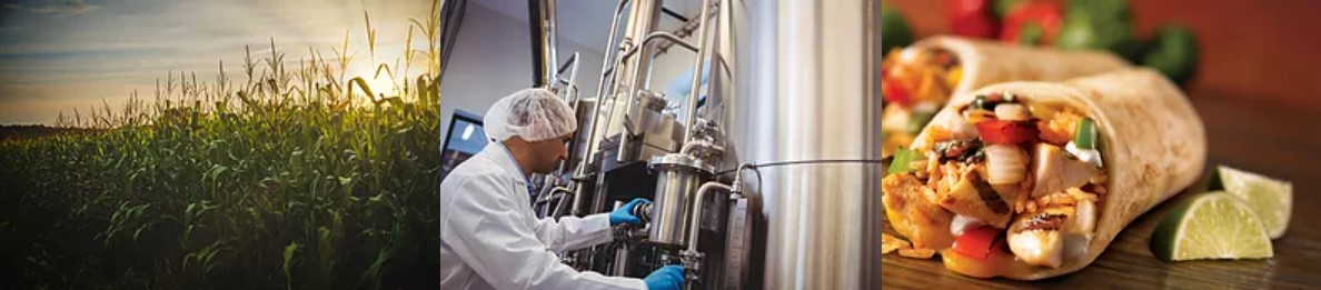 Dutch company The Protein Brewery raises € 22 million Series A investment