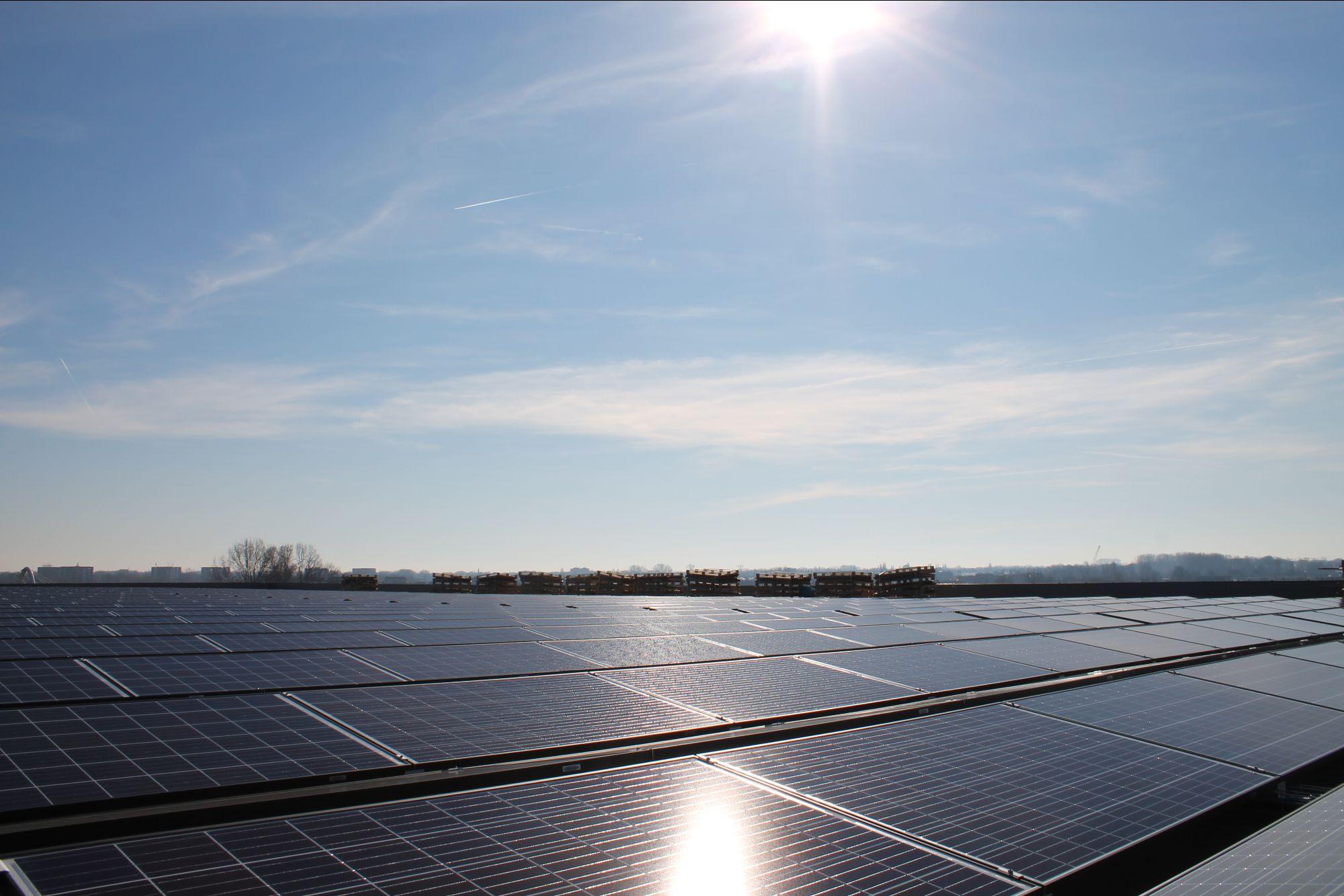 ZonnepanelenDelen financiert 100ste zakelijke zonnedak