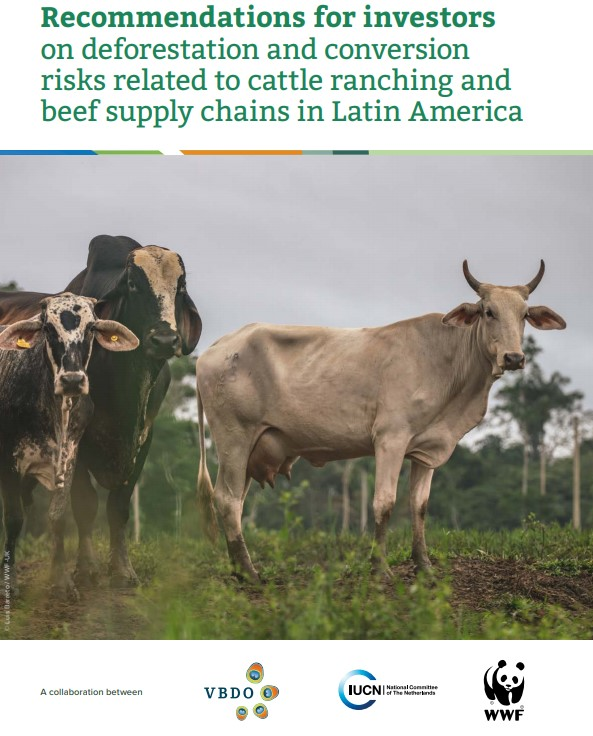 VBDO, IUCN NL en WWF-NL doen aanbevelingen aan Nederlandse investeerders om ontbossing in het Braziliaanse Amazonegebied te voorkomen