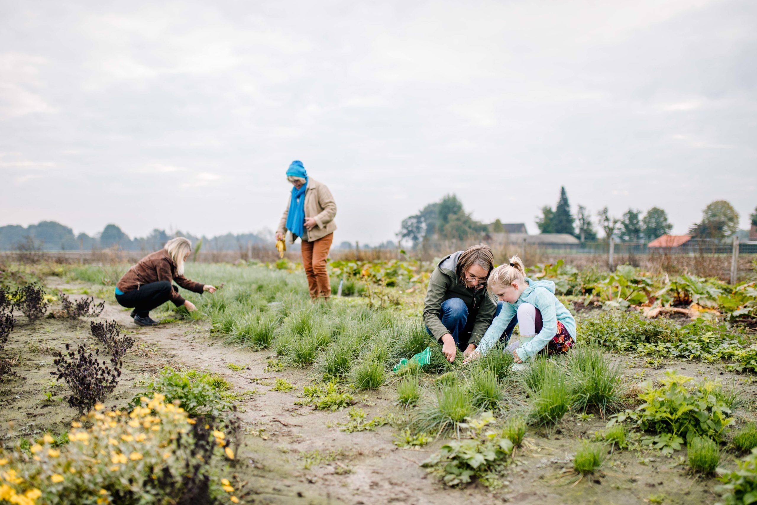 Nieuwe obligatielening stelt grond veilig voor natuurvriendelijke boeren