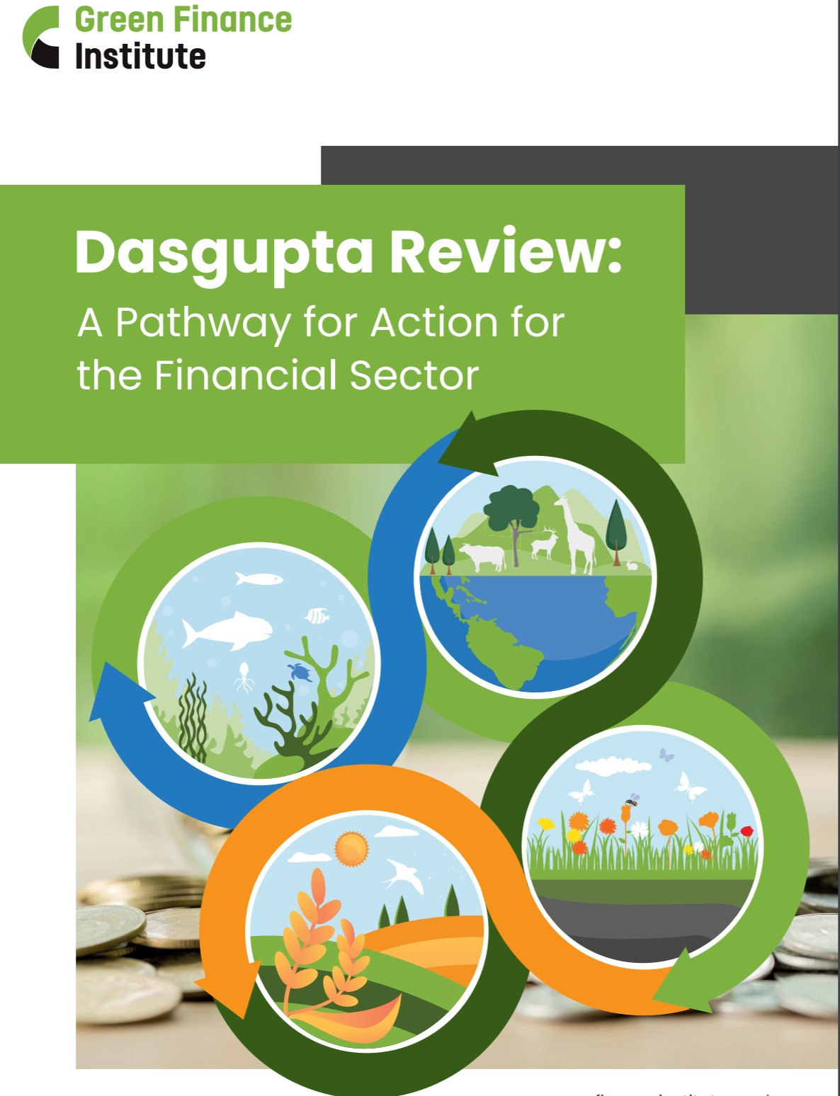 Dasgupta Review: A Pathway for Action for the Financial Sector