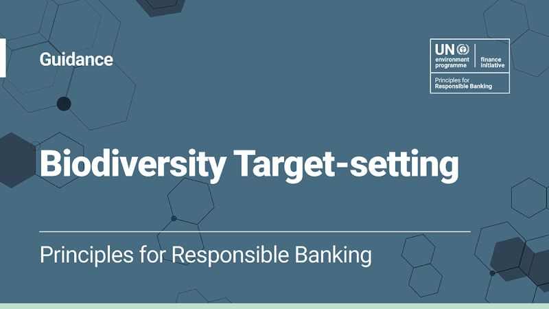 The Guidance on Biodiversity Target Setting is now out