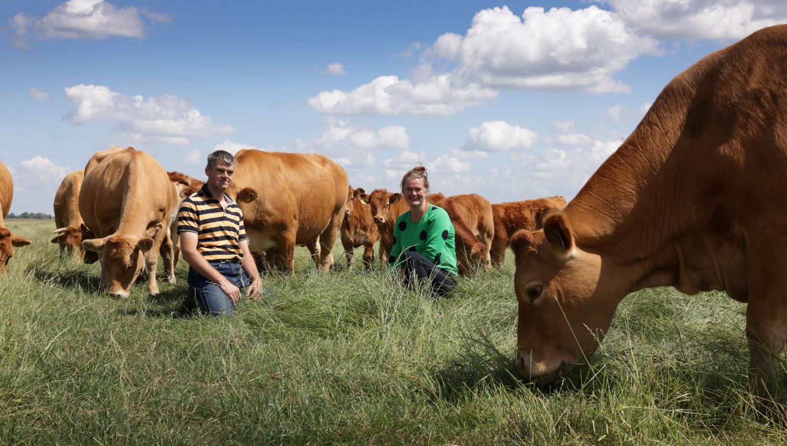 Duurzame boerderij Hoeve Kazan pioniert met natuur inclusieve landbouw en crowdfundt bijna twee ton voor nieuwe stal