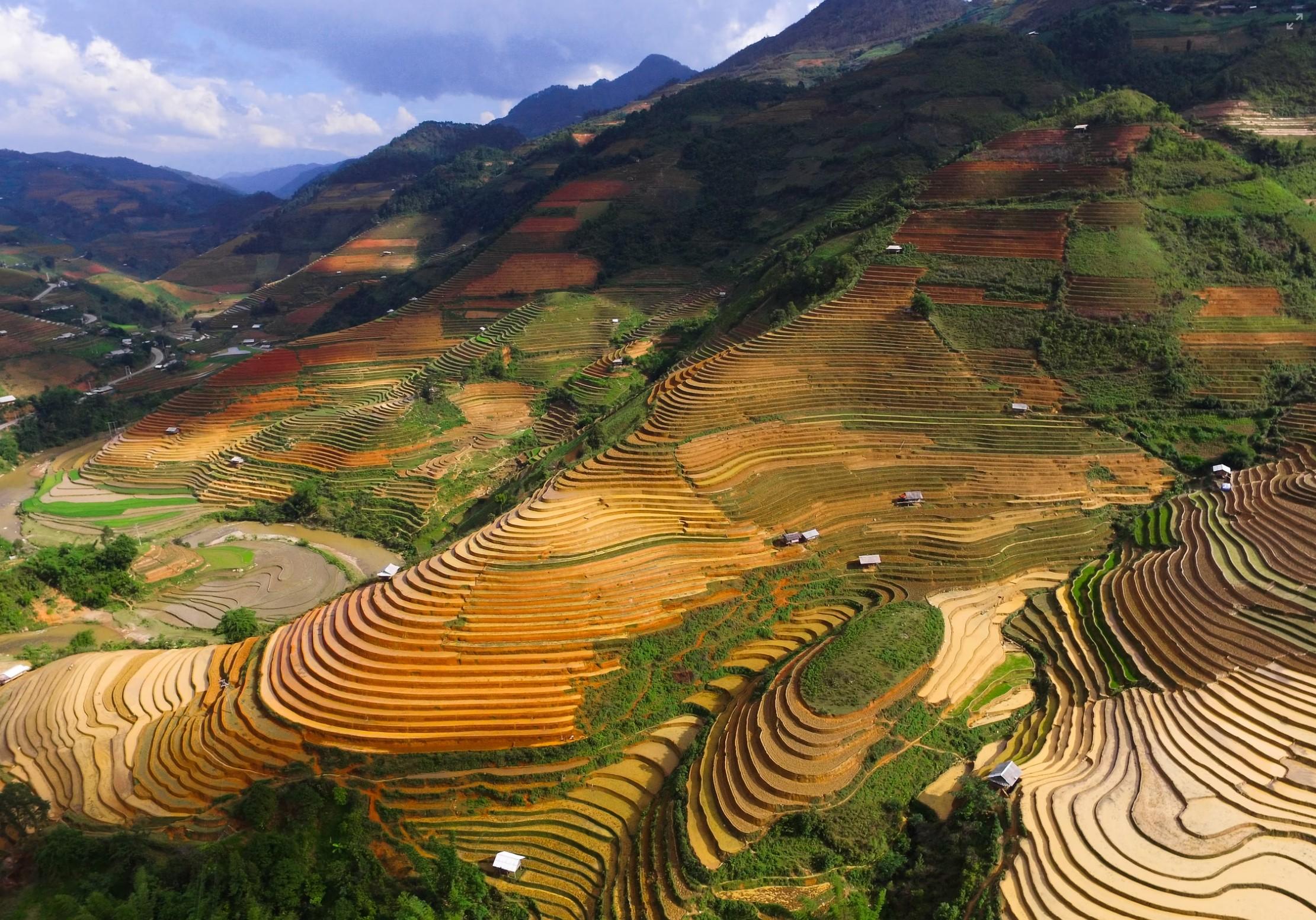 Institutionele beleggers kiezen bewust voor duurzame landbouwgronden